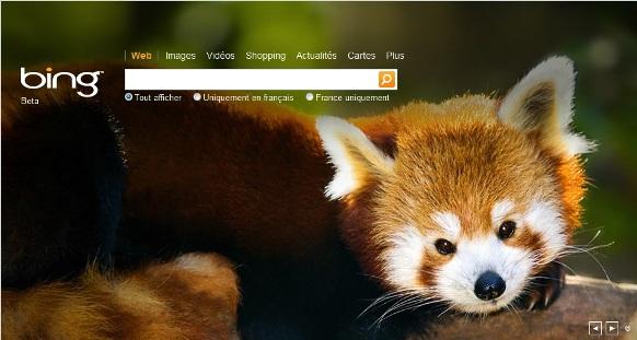 bing_homepage_firefox_red_panda