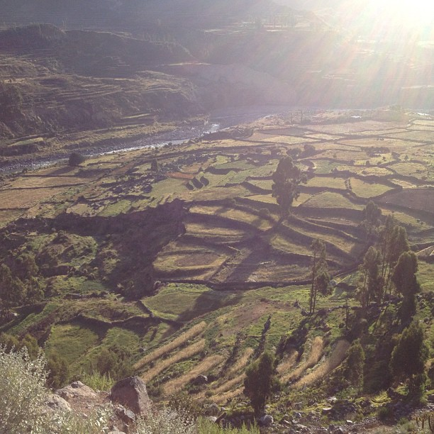 Vallee Colca