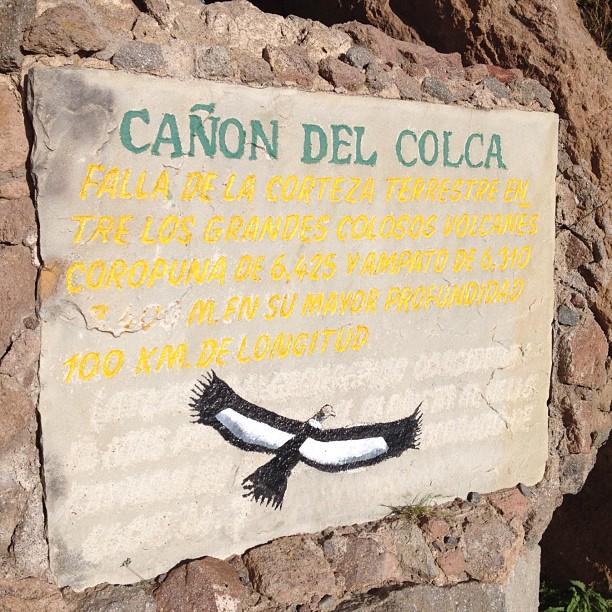 condor Vallee Colca