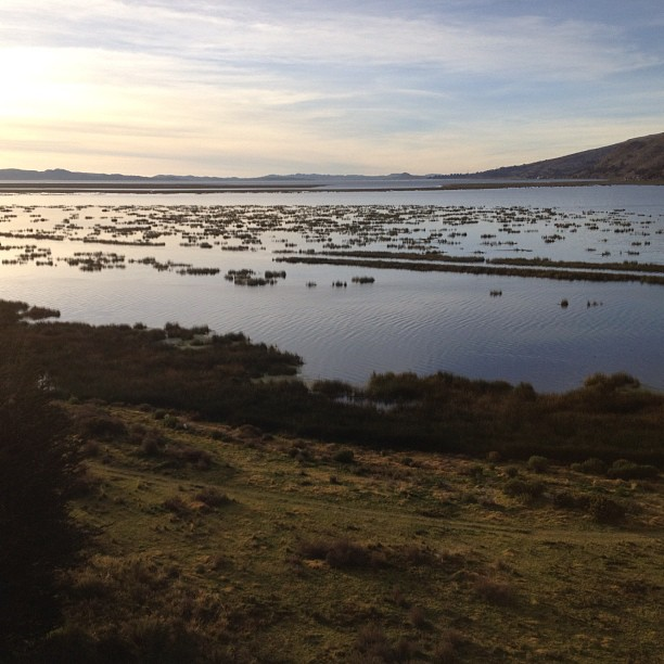 Libertador sur le lac Titicaca