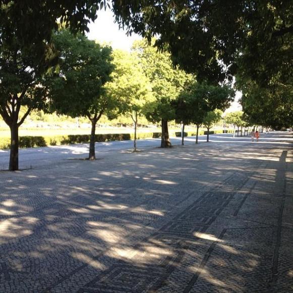 Lisbonne parc Edouardo VII