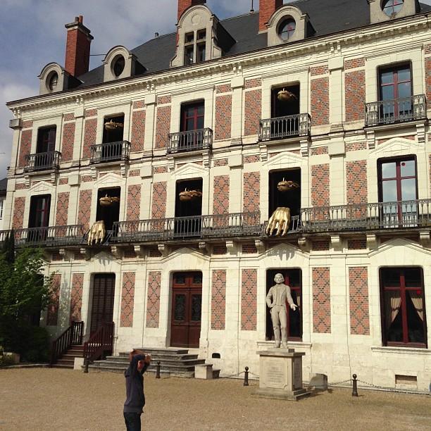 Chateaux de la Loire (55)