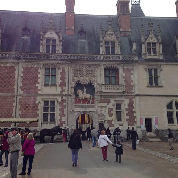 Chateaux de la Loire - Blois (44)