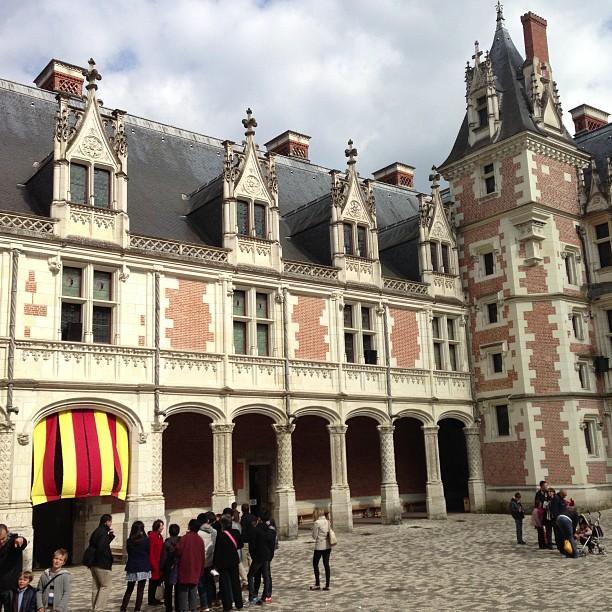 Chateaux de la Loire - Blois (46)