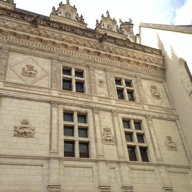 Chateaux de la Loire - Blois (47)
