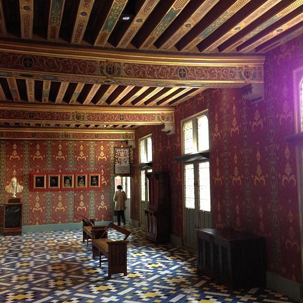 Chateaux de la Loire - Blois (54)
