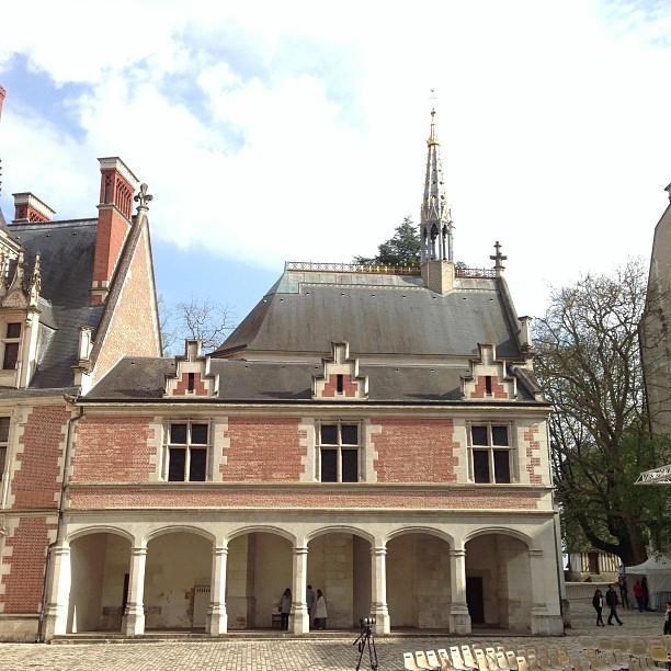 Chateaux de la Loire - Blois (75)