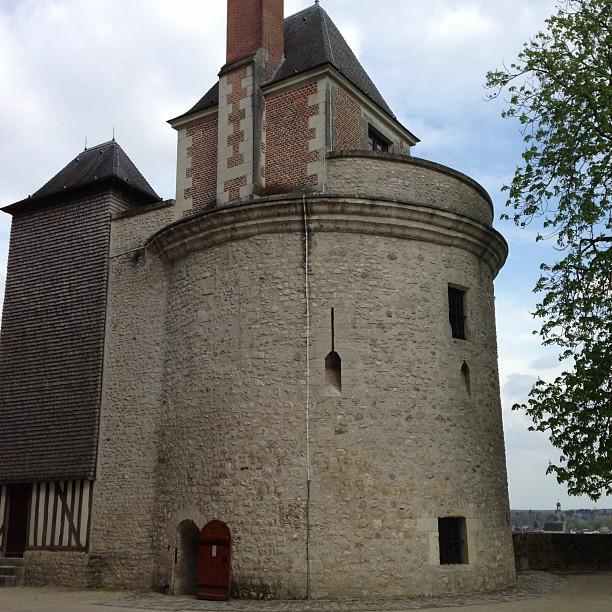 Chateaux de la Loire - Blois (80)
