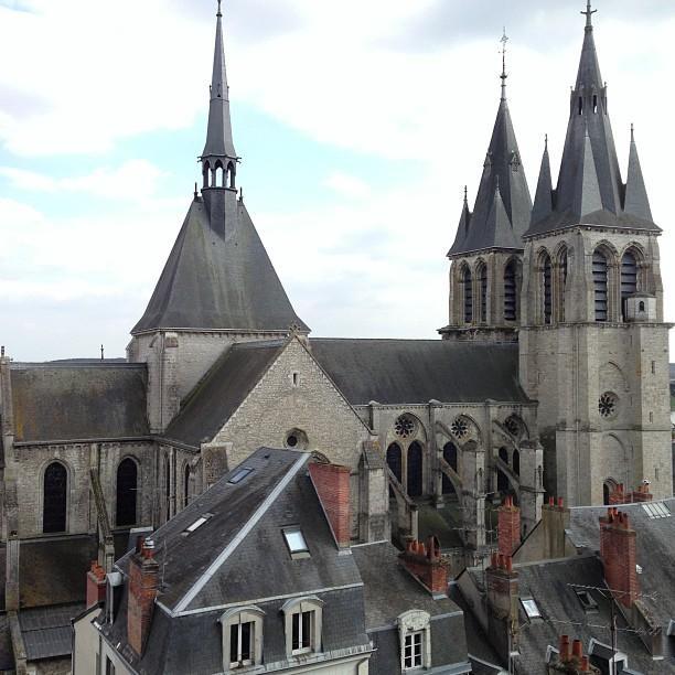 Chateaux de la Loire - Blois (81)