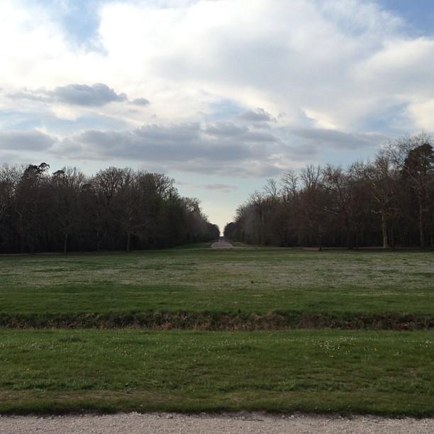 Chateaux de la Loire - Chambord (10)