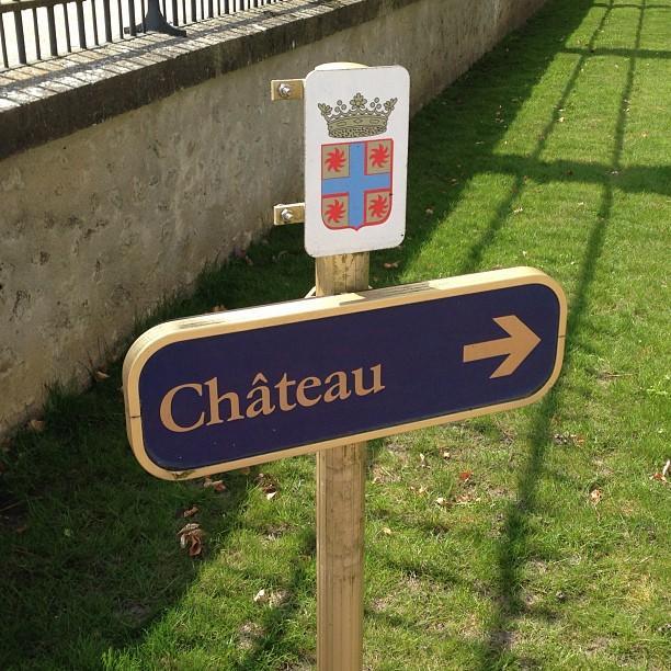 Chateaux de la Loire - Cheverny (44)