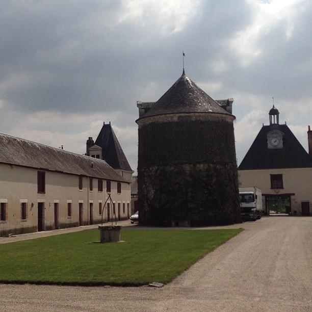 Chateaux de la Loire - Cheverny (45)