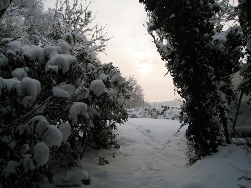 36_Hambourg Blankenese - 20-12-2010 (22)