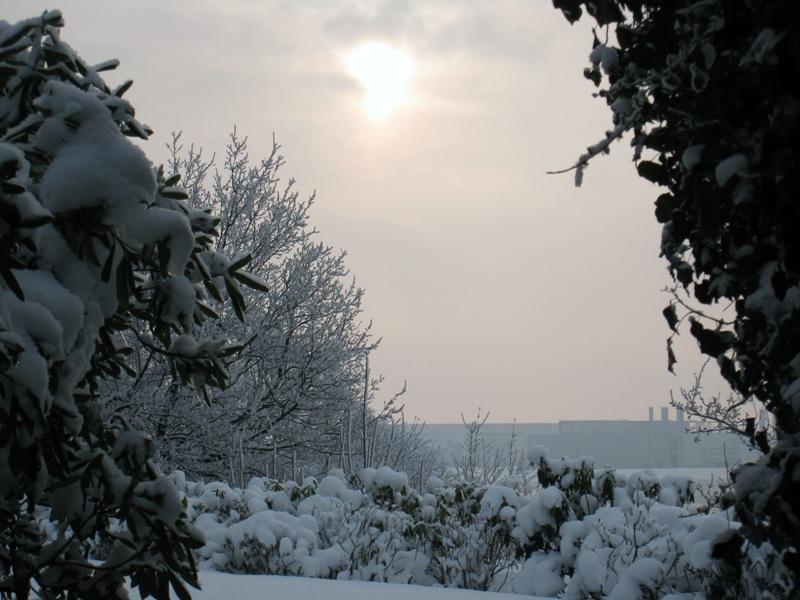 37_Hambourg Blankenese - 20-12-2010 (23)