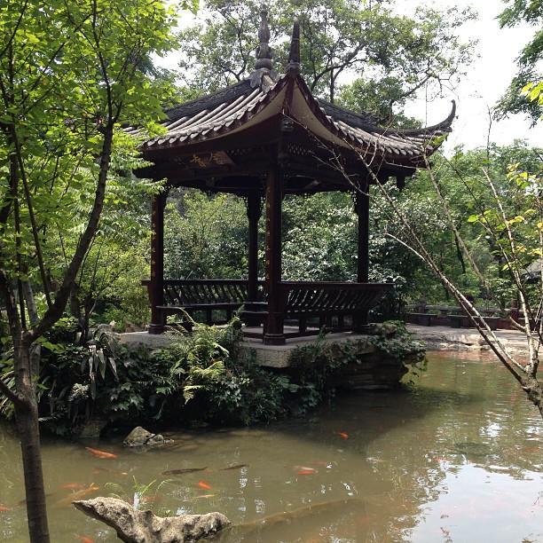 2013-05 Chine Bouddha Leshan