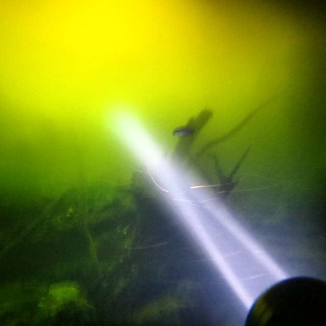 Mexique Plongee Cenotes