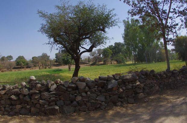 2014-03-13 Inde Monts Aravalli