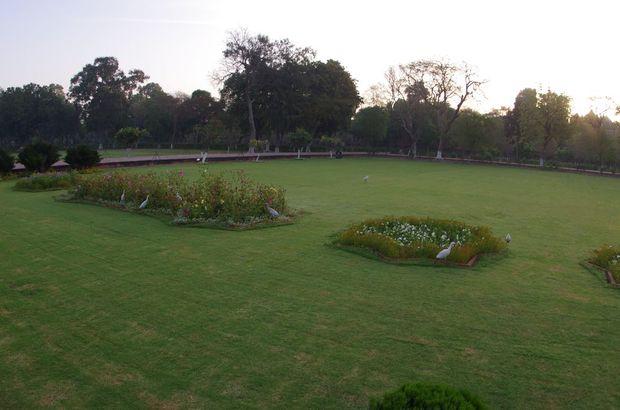 2014-03-20 Inde Agra Taj Mahal Aigrettes