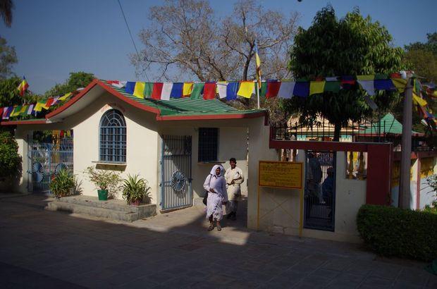2014-03-21 Inde Sarnath Bodhivriksha Bodhi Tree