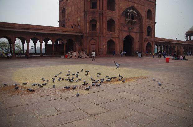 2014-03-23 Inde Delhi Jama Masjid