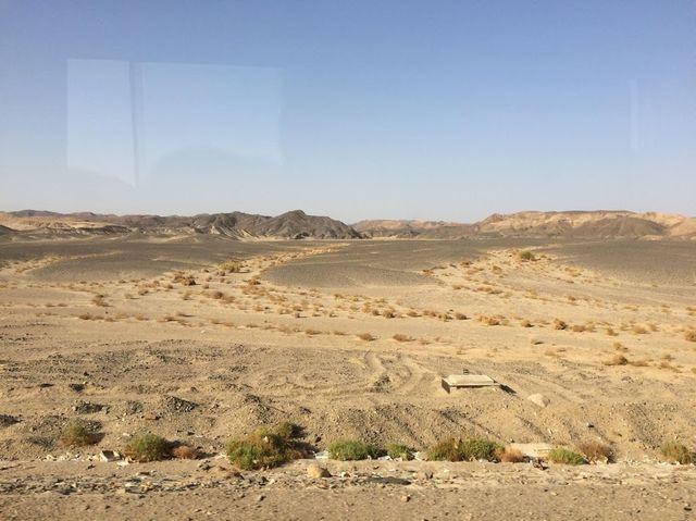 2014-11-09 Egypte Plongee Shaab Marsa Alam 08