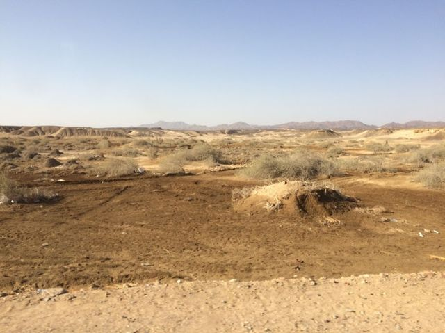 2014-11-09 Egypte Plongee Shaab Marsa Alam 13