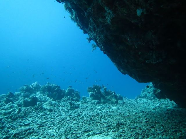 2014-11-09 Egypte Plongee Shaab Marsa Alam Tunnel
