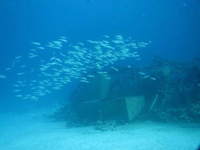 2014-11-09 Egypte Plongee Shaab Marsa Alam Epave