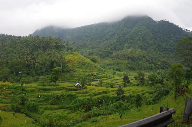 2015-05-02 Bali Agang Rizieres 03