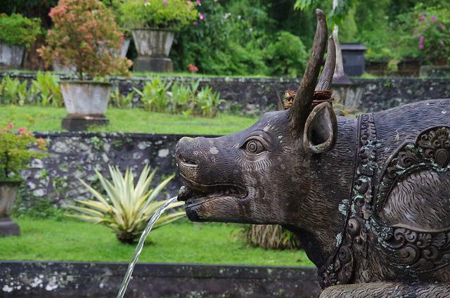 2015-05-02 Bali Tirta Gangga 02