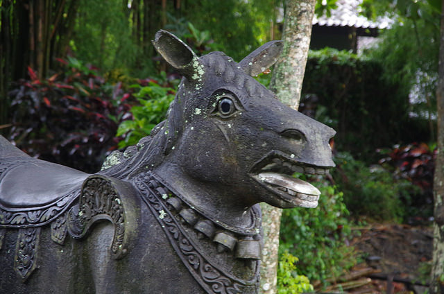 2015-05-02 Bali Tirta Gangga 08