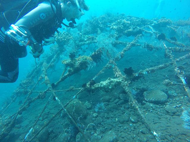 2015-05-03 Bali Plongees Amed Seraya Secret 13
