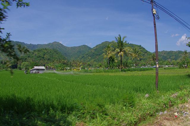 2015-05-09 Bali Sidemen