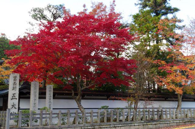 Japon - Koyasan Muryokoin