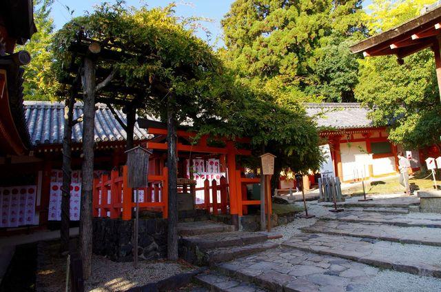 Japon - Nara Kasuga Taisha