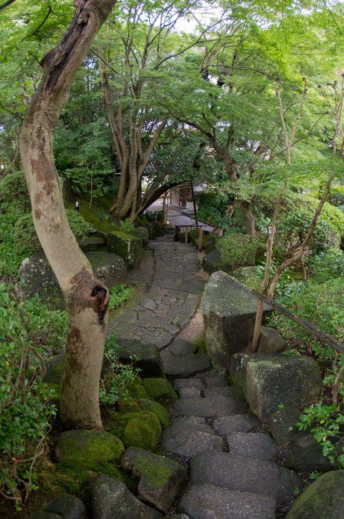 Japon - Kamakura Temple Hokoku Ji Zen