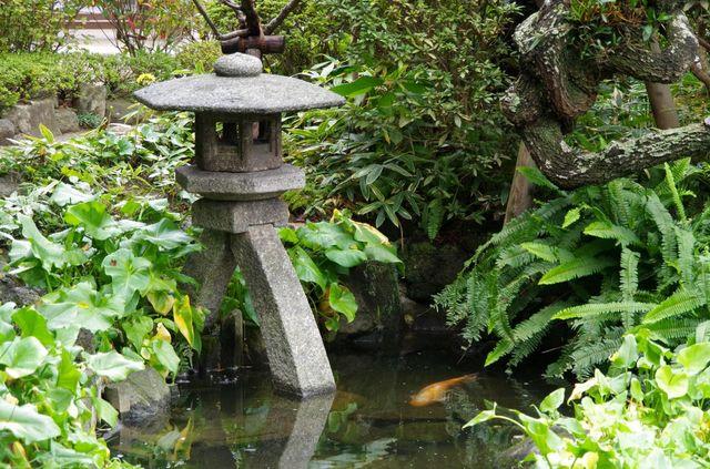 Japon - Kamakura Jardin Zen Humide