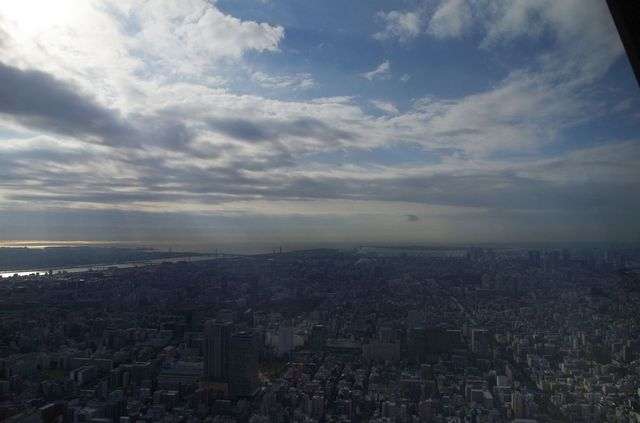 Japon - Tokyo - View from Tokyo Sky Tree