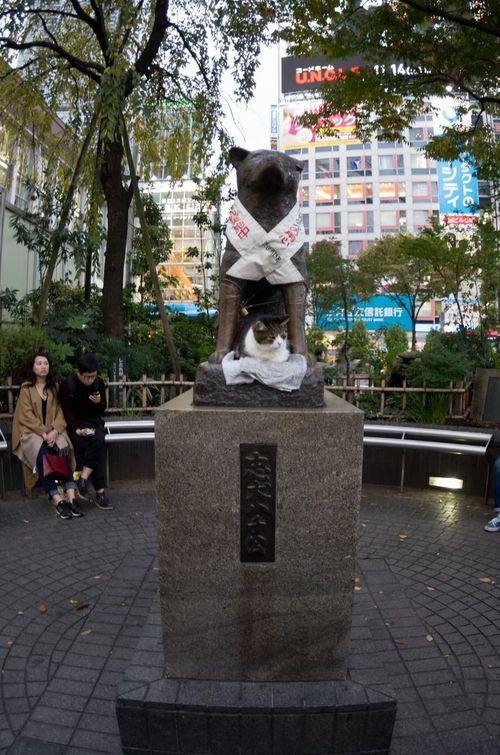 Japon - Tokyo - Shibuya - Hachiko