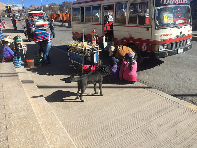 Jour 15 Bolivie Potosi Buses width=