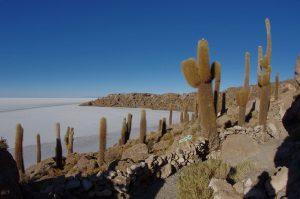 Bolivie – Jour 4 : 1er jour du tour depuis Uyuni vers le Sud Lipez