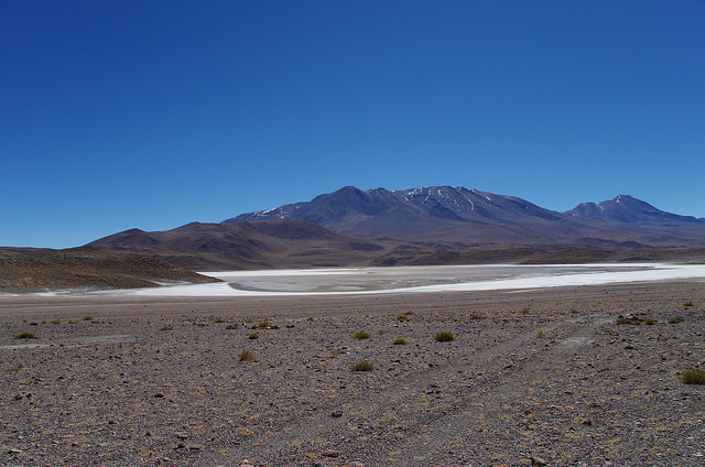 Jour 5 Bolivie Laguna Chiarcota
