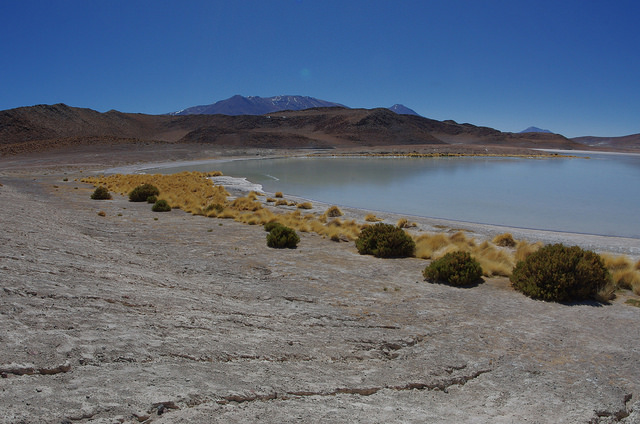 Jour 5 Bolivie Laguna Honda
