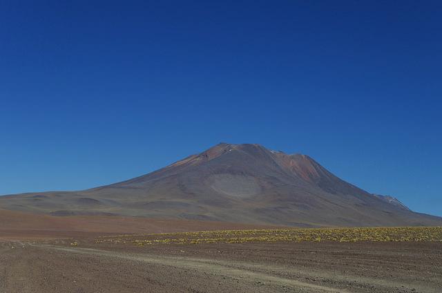 Jour 5 Bolivie Nandou de Darwin