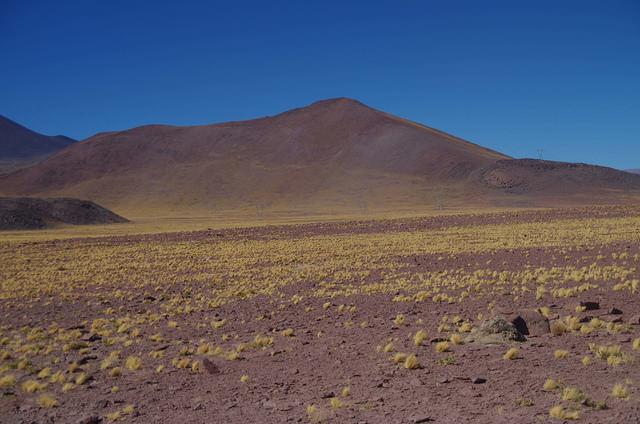Jour 7 Chili Ruta Del Desierto