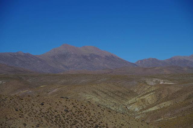 Jour 9 Argentine Quebrada Cactus