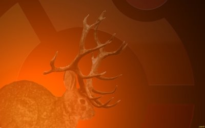Sortie de Ubuntu 9.04 Jaunty Jackalope en version finale