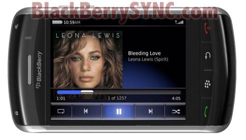 Blackberry Thunderstorm Media Thunder